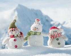 MemoTrek wünscht Frohe Weihnachten und ein gutes neues Jahr!