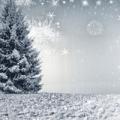MemoTrek wuenscht Frohe Weihnachten 2017 Gutes Neues Jahr 2018