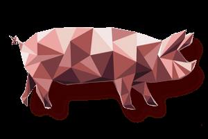 Jahr des Schweins Chinesisch Neujahr Bestellungen von bedruckten USB-Sticks bei MemoTrek